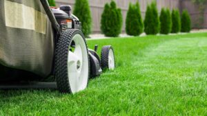 5 Lawnmower Care Tips
