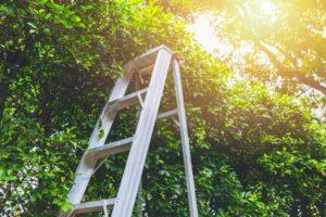 Tripod Ladders Cork