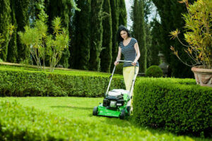 Lawnmowers Cork: How To Choose The Right Lawnmower For Your Garden
