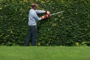 electric garden tools