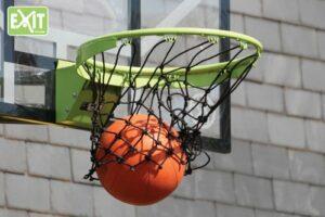 Choosing a Basketball Net